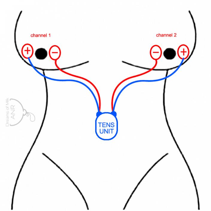 inducing Erotic techniques lactation